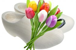 traditional-blank-round-and-wooden-tulips